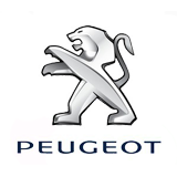 Retro Peugeot 407 Coupe